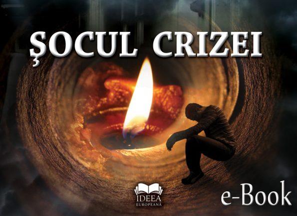 Șocul crizei (eBook)