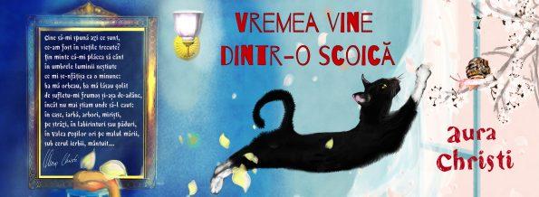 banner-ideea-vremea